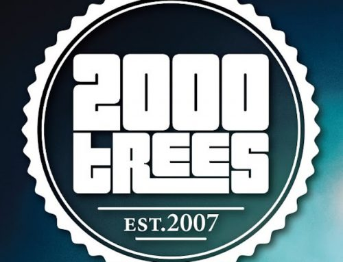 2000Trees Festival Release Thursday And Friday Line-Up